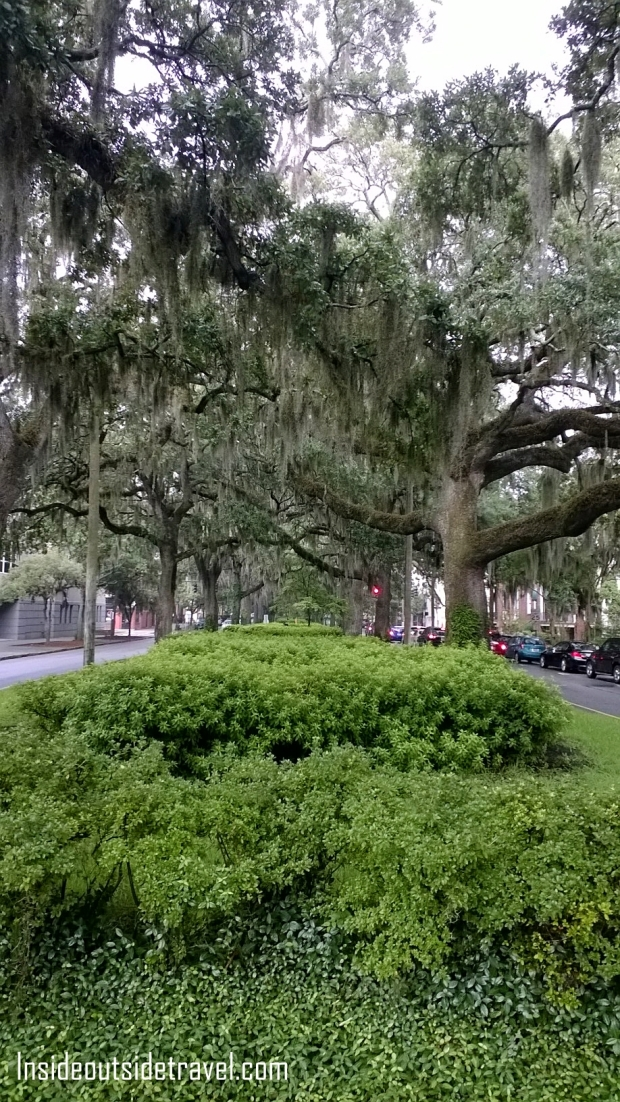 Savannah-Lush Parkways